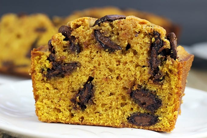 Pumpkin Chocolate Bread filled with delicious Milk Chocolate disks and a perfect breakfast or dessert! This recipe comes together in just a few minutes and doesn't need a mixer to make your house smell like Fall is here!