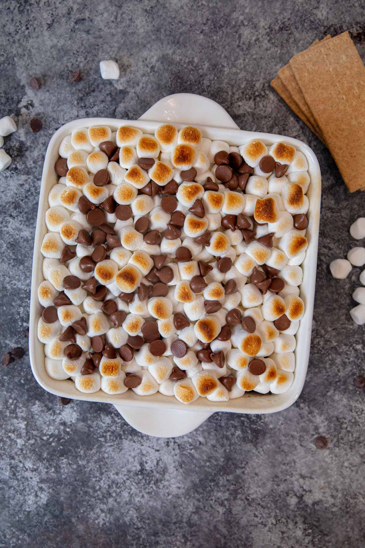 S'mores Brownies with toasted marshmallows and chocolate chips
