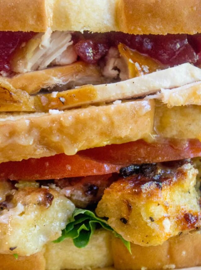 Ross Geller's legendary Turkey Moist Maker Sandwich in all it's glory. Turkey breast, stuffing, cranberry sauce and the important moist maker layer, this is the sandwich of your dreams.