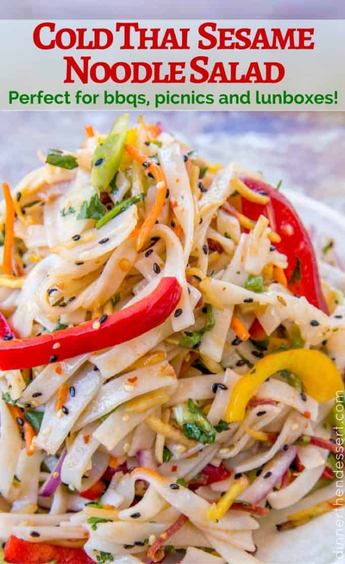 In just 20 minutes you can be enjoying this Cold Thai Noodle Salad! It's perfect for back to school!