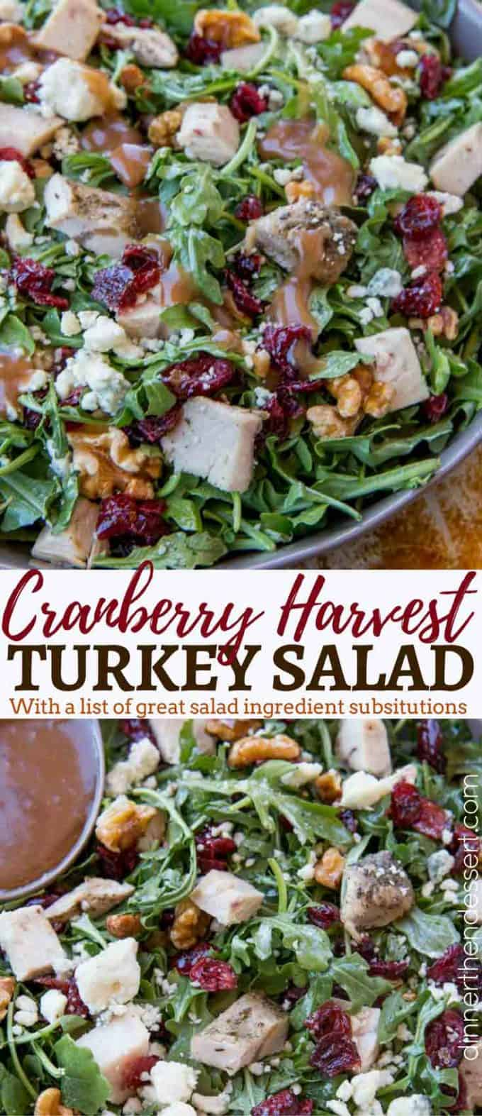 Cranberry Harvest Turkey Salad made with arugula, turkey breast, cranberries, gorgonzola, and walnuts with a delicious and easy balsamic vinaigrette.