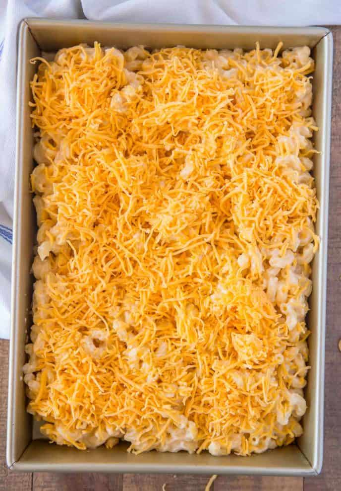 Baked Mac and Cheese in baking dish before baking