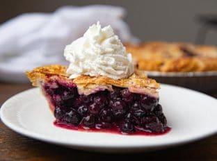 Slice of Blueberry Pie