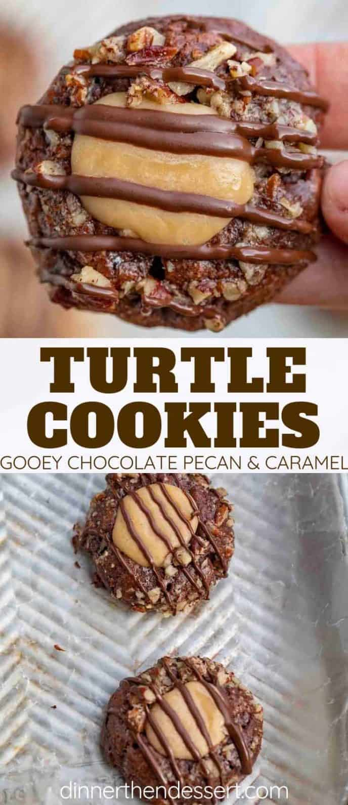 Easy Turtle Cookies