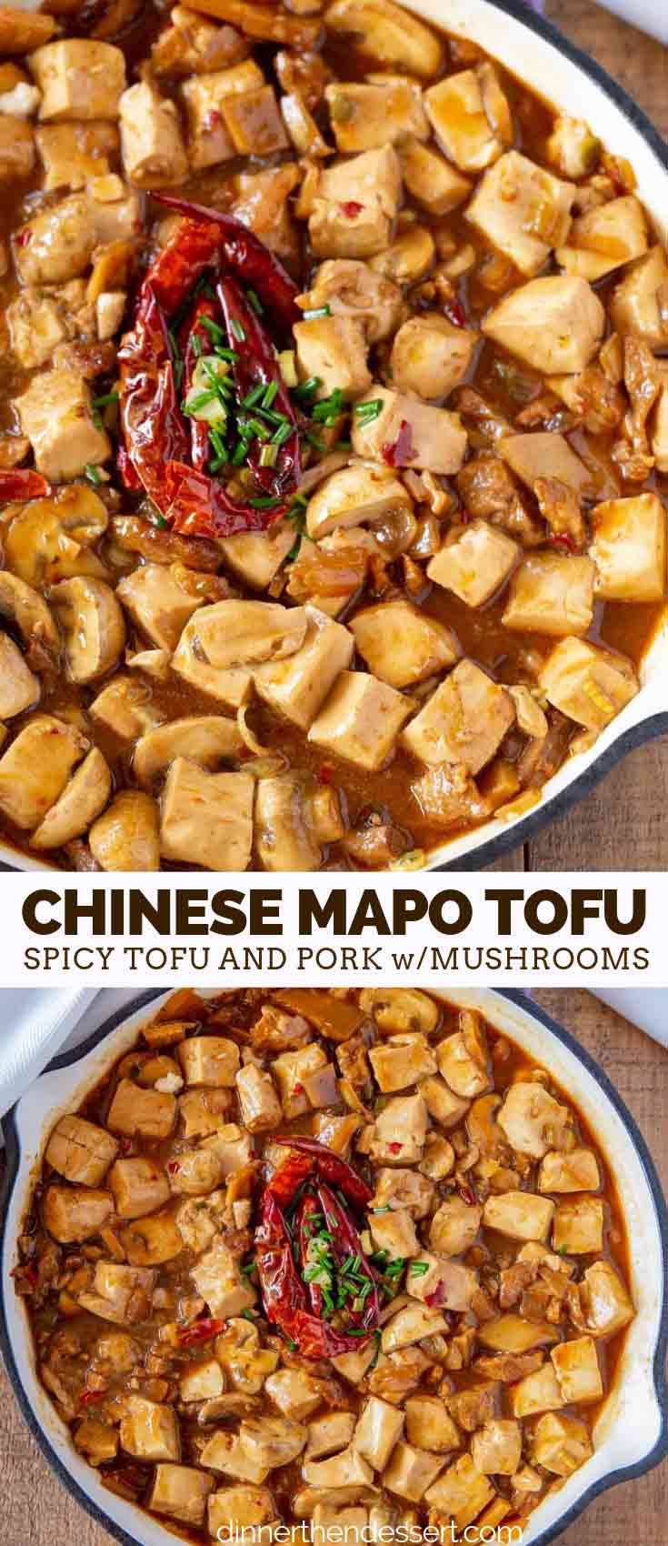 Chinese Takeout Ma po Tofu with Pork