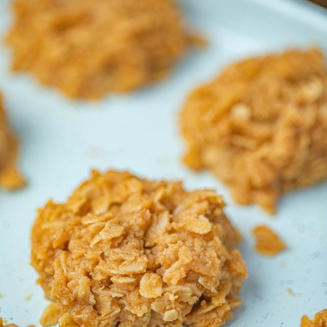 Peanut Butter No Bake Cookie