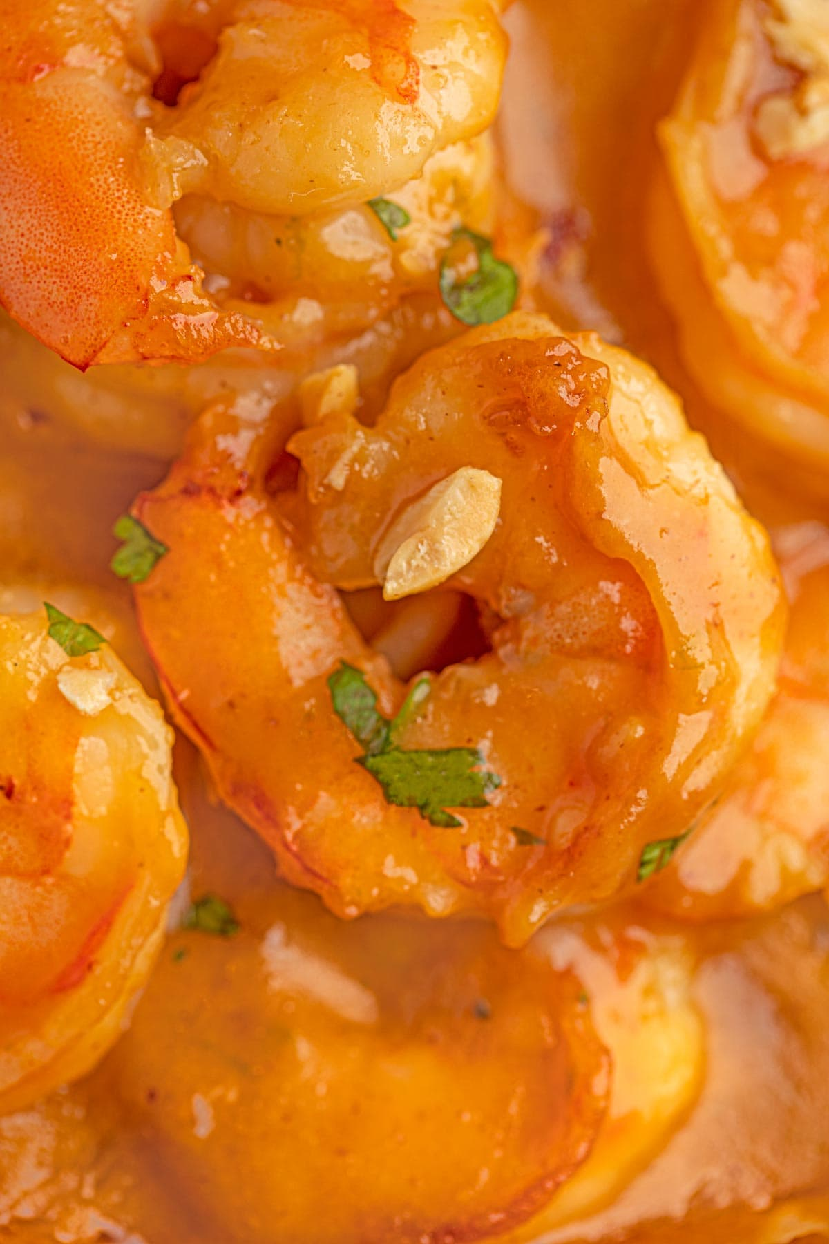 Thai Peanut Shrimp up close