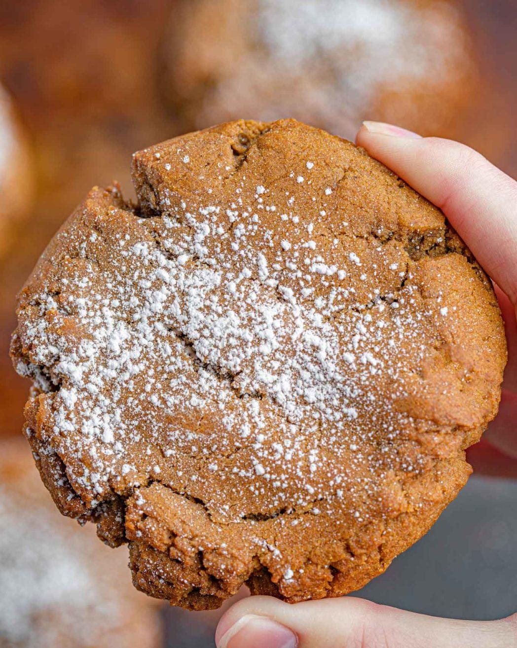 Ginger Cookie being held