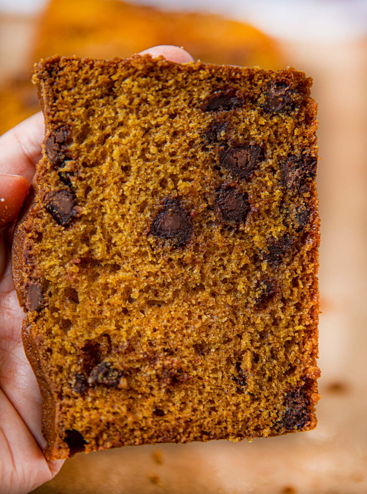 Slice of Pumpkin Chocolate Chip Bread