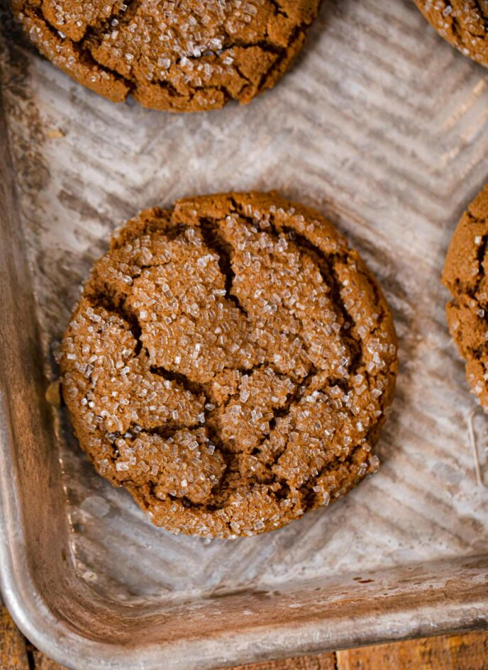 Molasses Cookie on cookie sheet