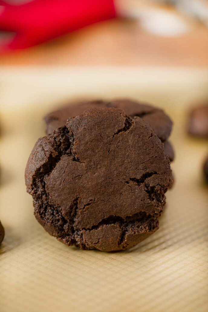 Chewy Chocolate Cookie