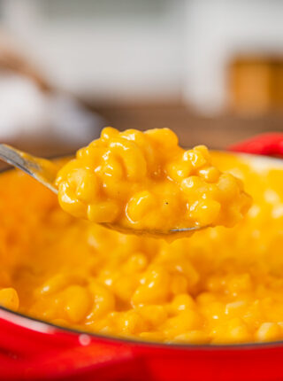 Stouffer's Mac and Cheese on large spoon