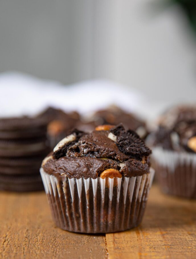 Chocolate Oreo Cupcake close up
