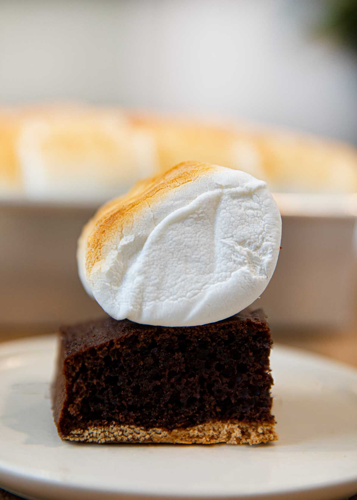 Serving of S'mores Sheet Cake on plate