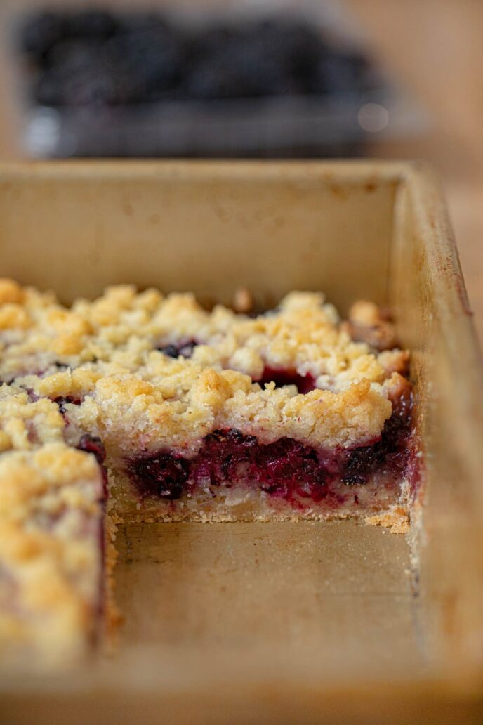 Blackberry Crumb Bars cross section in baking pan