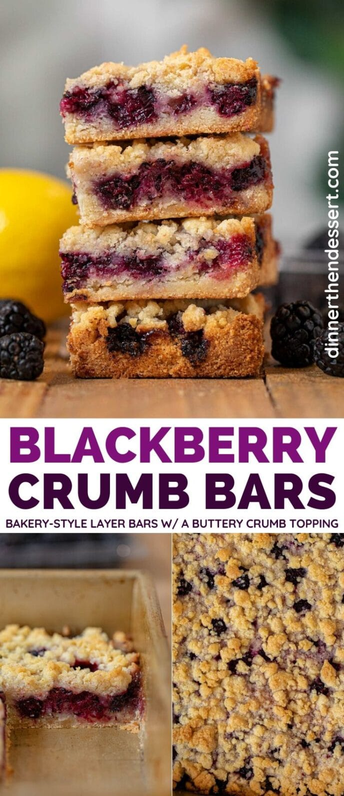Blackberry Crumb Bars collage
