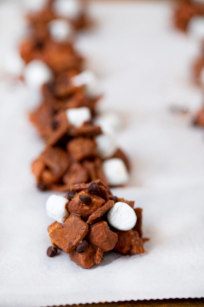 No-Bake S'mores Cookies in a line on parchment paper