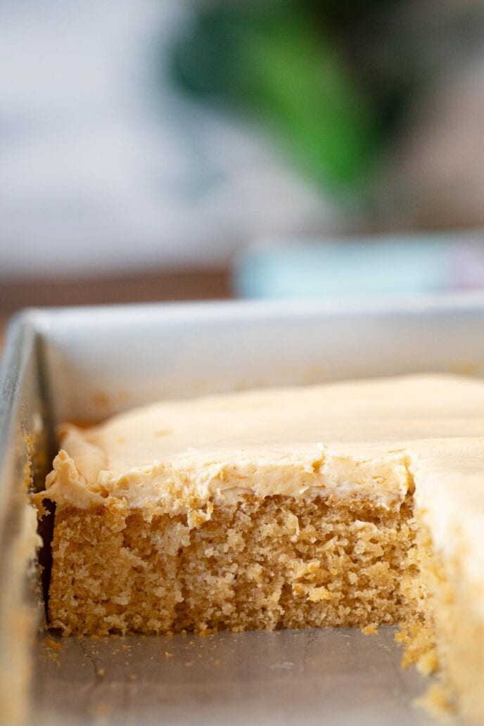 Peanut Butter Sheet Cake in baking dish with slice removed