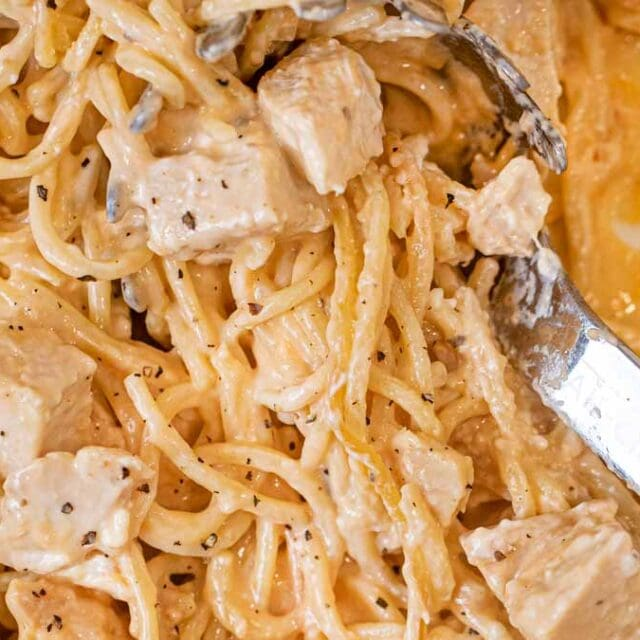 Baked Chicken Spaghetti in ladle