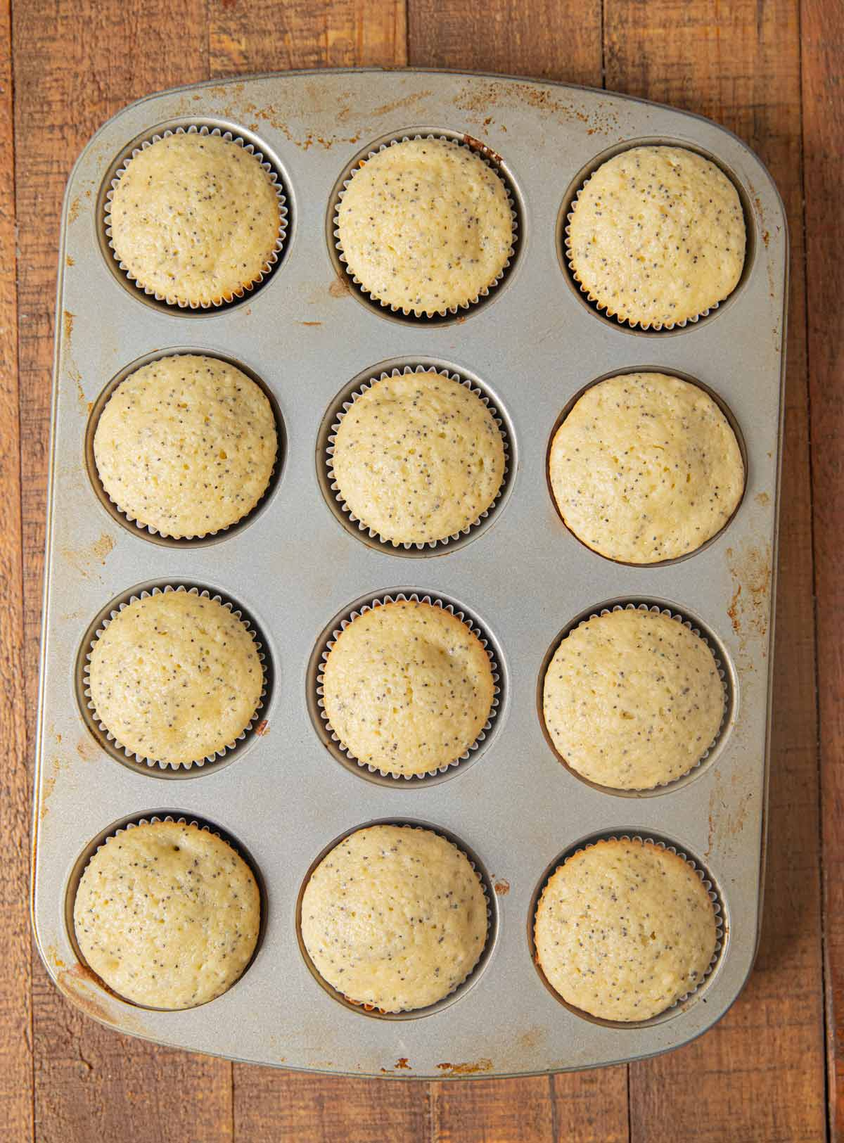 Poppy Seed Muffins in muffin tin