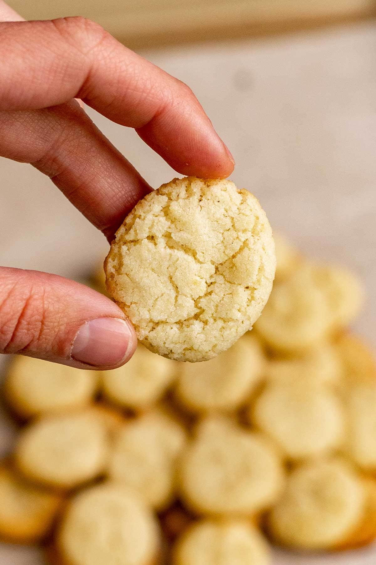 Nilla Wafer Cookies (Copycat) with hand