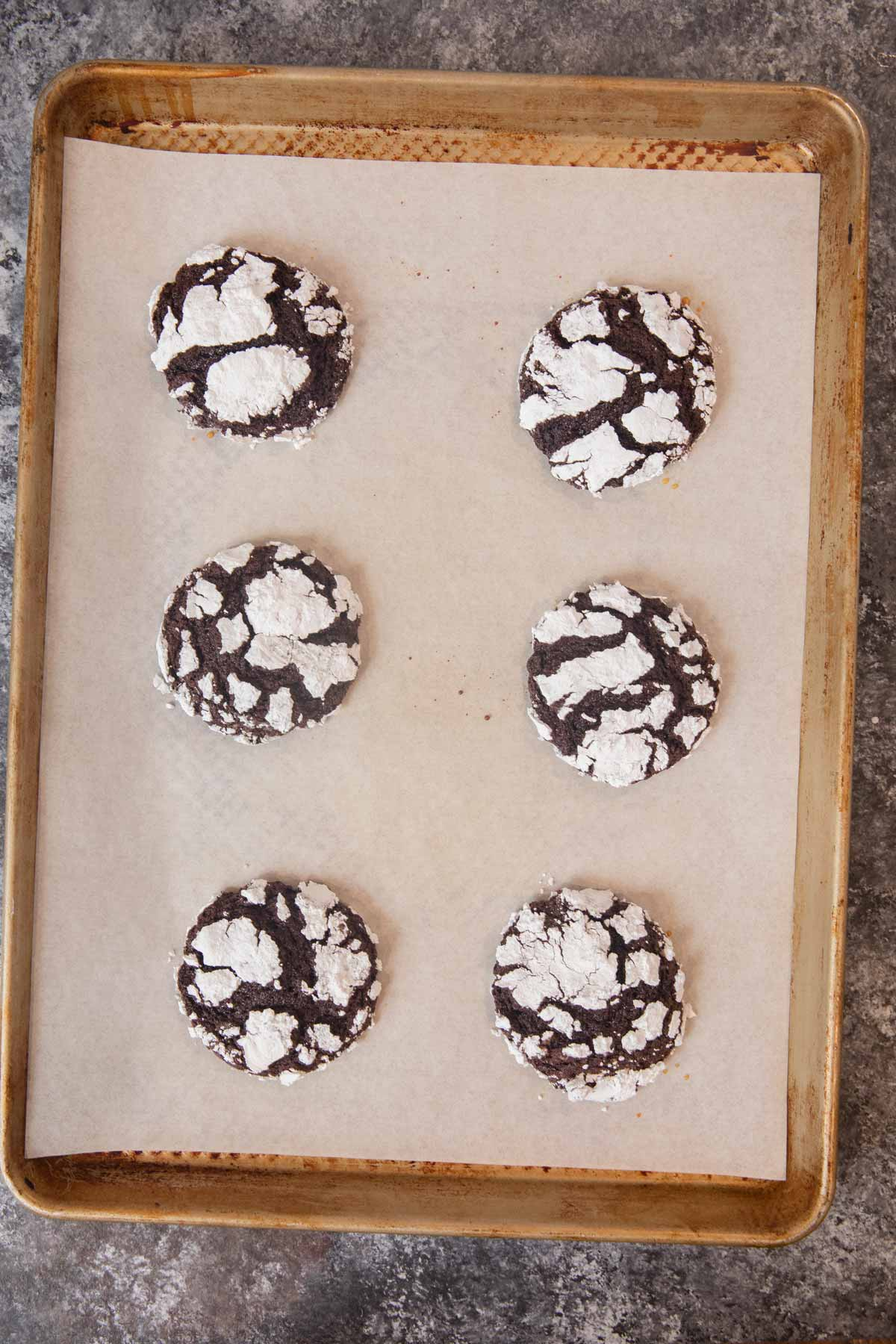 Chocolate Crinkle Cookies on cookie sheet