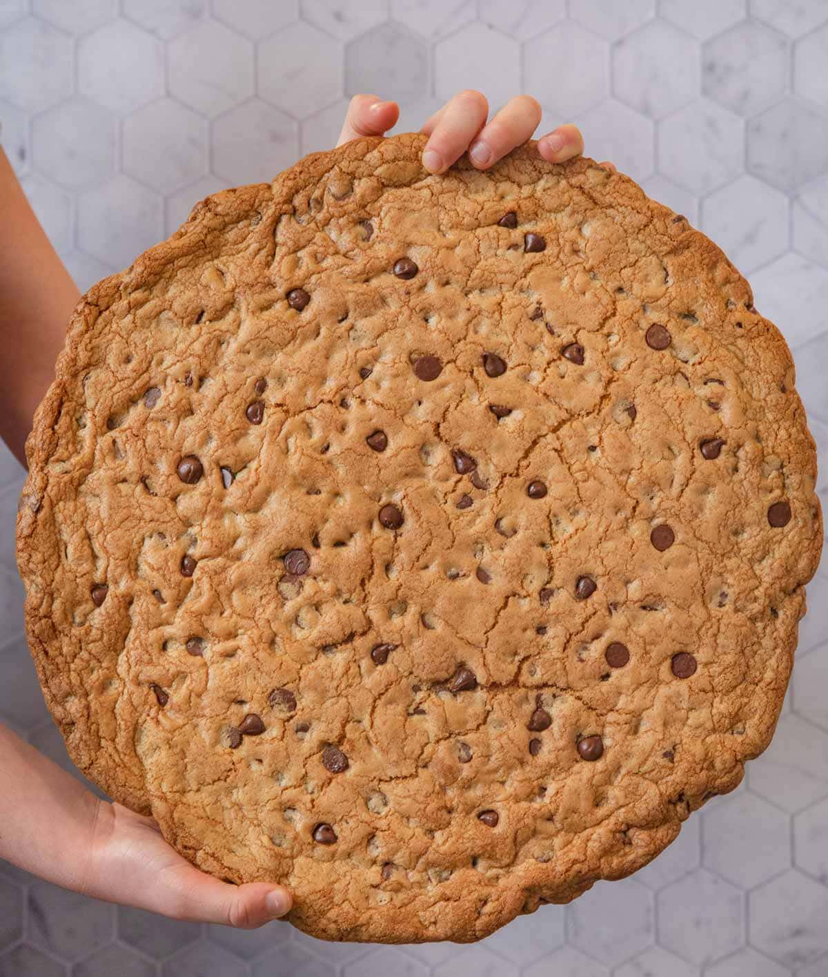 Giant Chocolate Chip Cookie held vertically