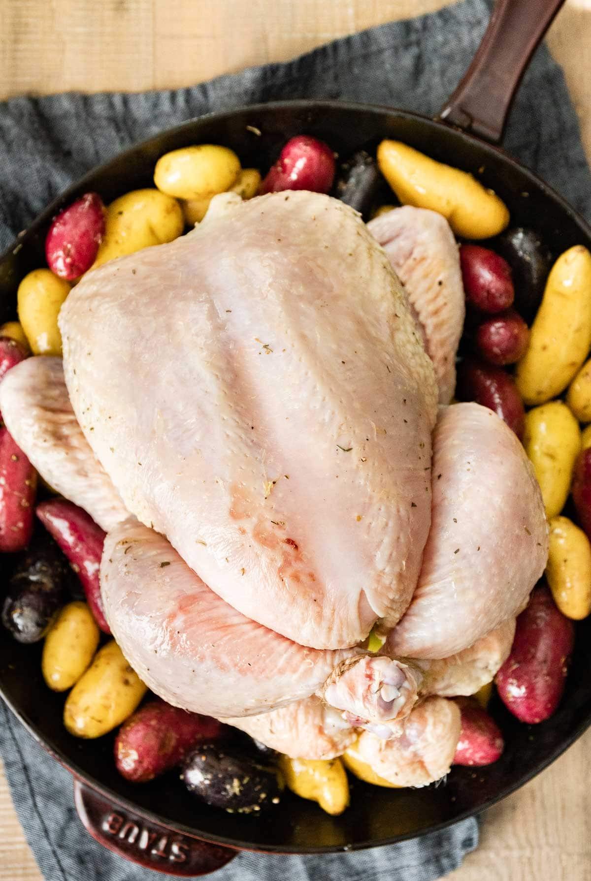Chicken Brine chicken prepped for roasting