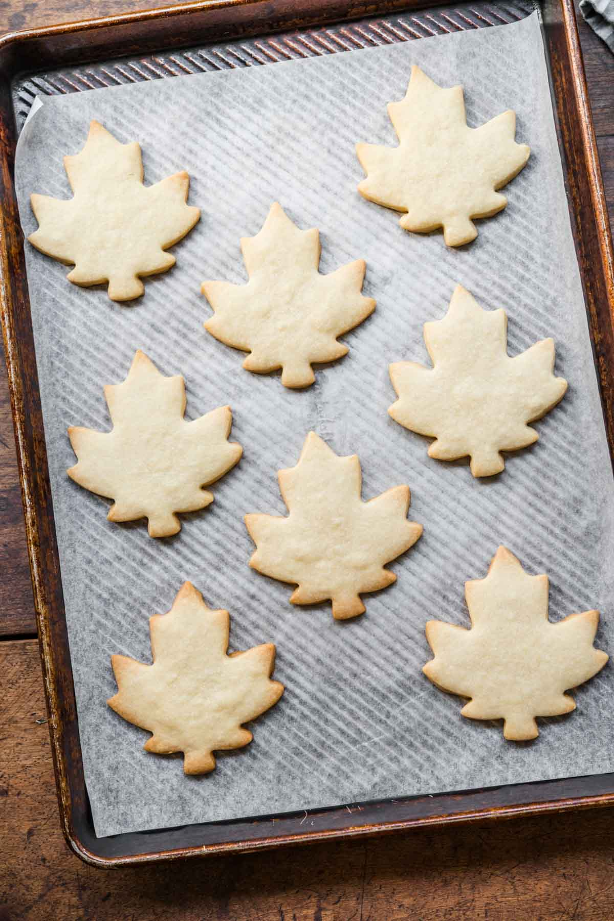 Glazed Maple Shortbread Cookies cut out on baking sheet lined with parchment after baking